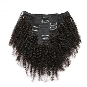 Afro Kinky Curly Clip-In Set